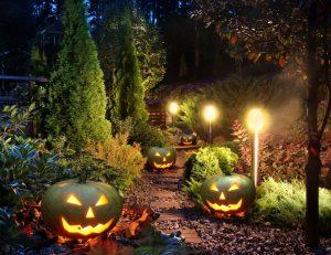 Best Landscape Lighting Transformer